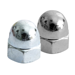 Picture for category Hex Dome Nut