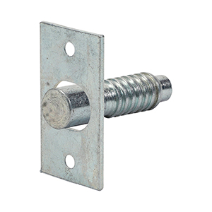 Picture for category Hinge Bolt